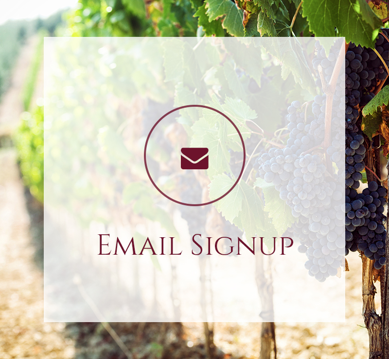Email signup icon with vineyard background